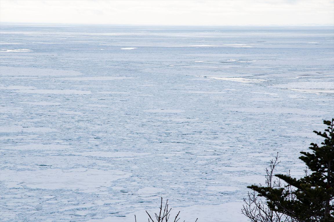 プユニ岬から望む流氷