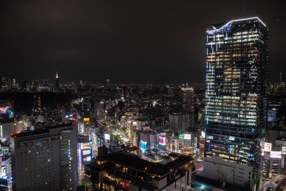 セルリアンタワー東急ホテル 夜景 週末物見遊山